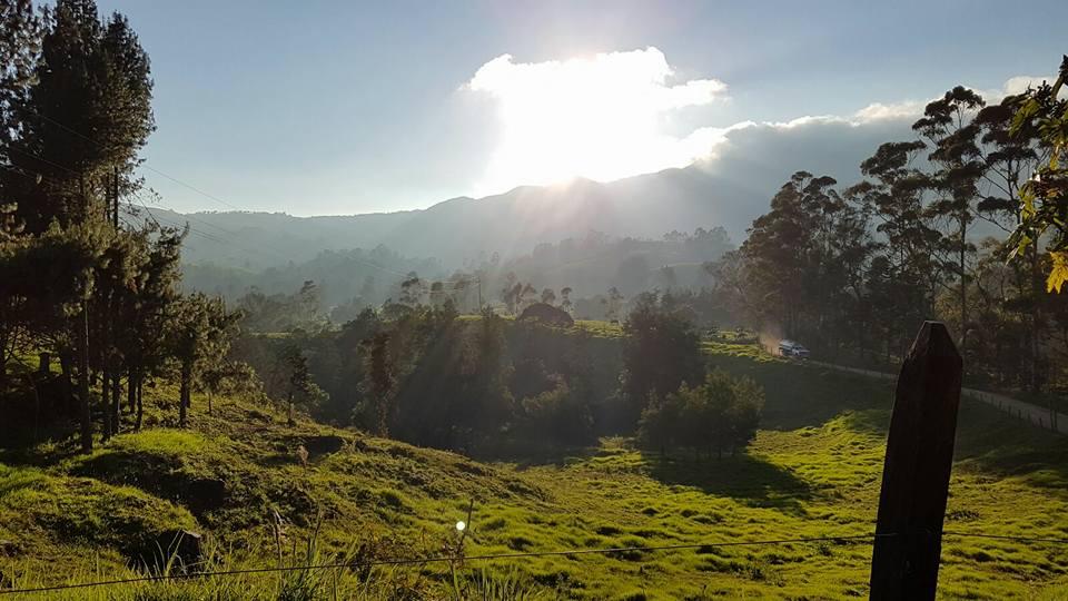 Medellin: Stadt des ewigen Frühlings